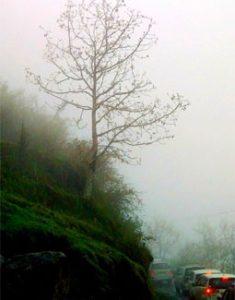 এন্ড্রোপজ - বাংলা গল্প - সৃষ্টি ২০শে মে ২০০৯ সংখ্যায় প্রকাশিত